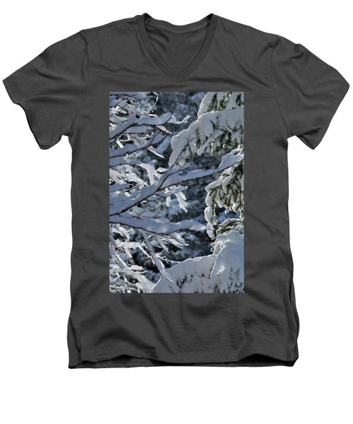 First Snow II Men's V-Neck T-Shirt