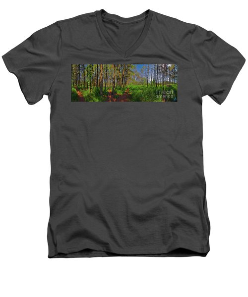 Paths, Pines 360 Men's V-Neck T-Shirt