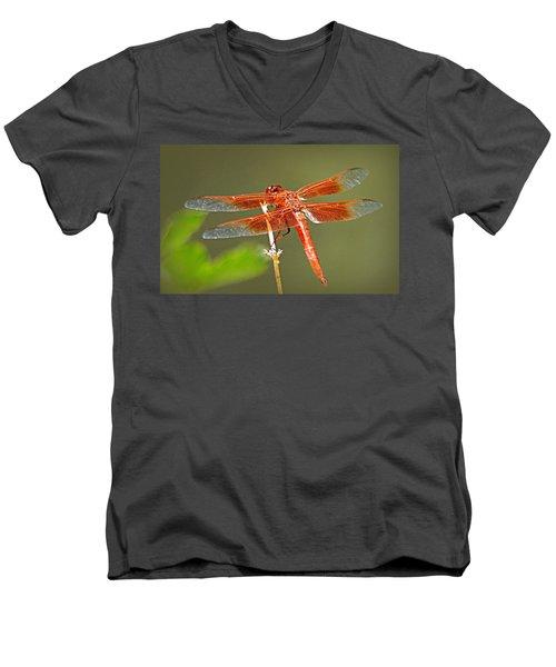 Flame Skimmer Men's V-Neck T-Shirt