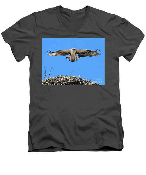 Men's V-Neck T-Shirt featuring the photograph Flegeling Osprey by Debbie Stahre