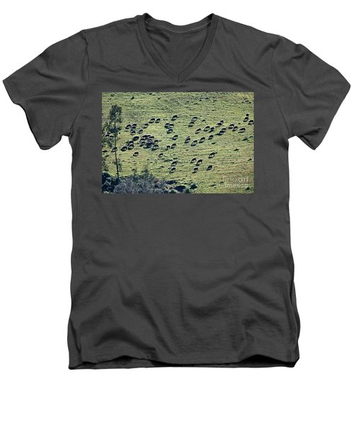 Men's V-Neck T-Shirt featuring the photograph Flock Of Sheep by Bruno Spagnolo
