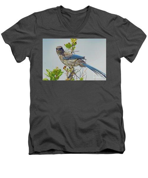 Florida Juvie Scrub Jay Men's V-Neck T-Shirt