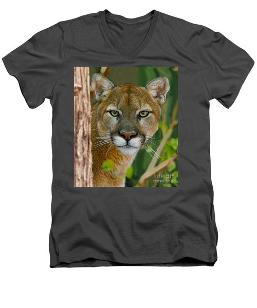Florida Panther Men's V-Neck T-Shirt