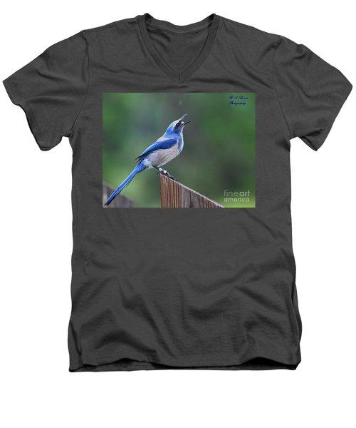 Florida Scrub Jay Eating Men's V-Neck T-Shirt