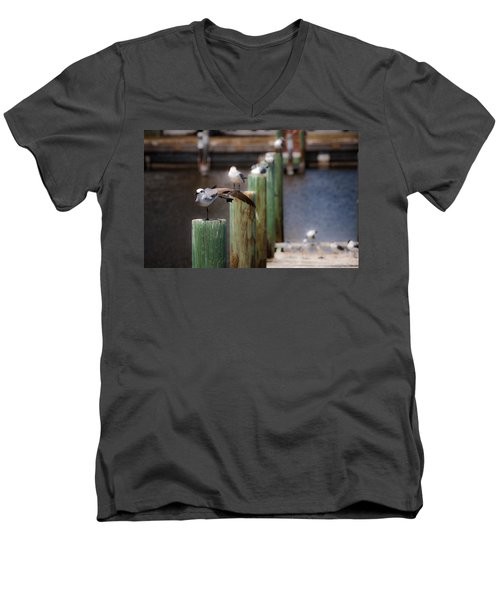 Men's V-Neck T-Shirt featuring the photograph Florida Seagull Playing by Jason Moynihan