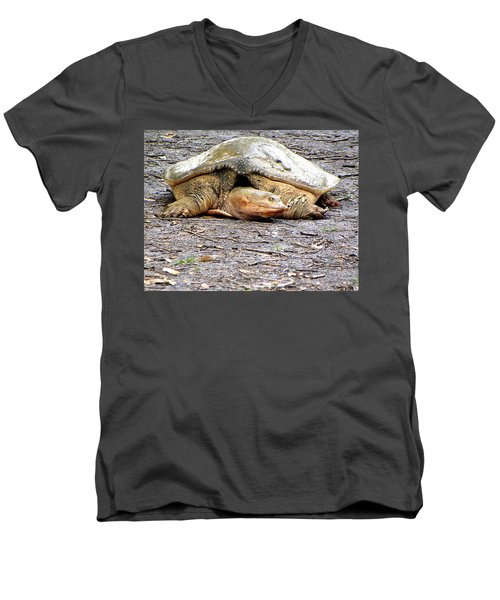 Men's V-Neck T-Shirt featuring the photograph Florida Softshell Turtle 000 by Chris Mercer