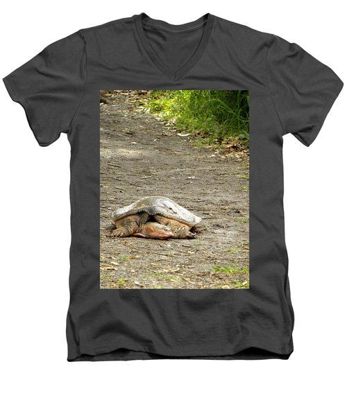 Men's V-Neck T-Shirt featuring the photograph Florida Softshell Turtle  by Chris Mercer