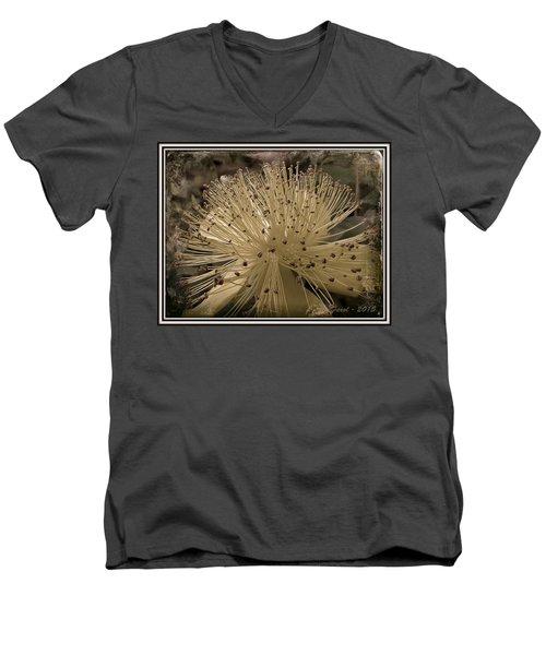 Adventure In Grey Men's V-Neck T-Shirt