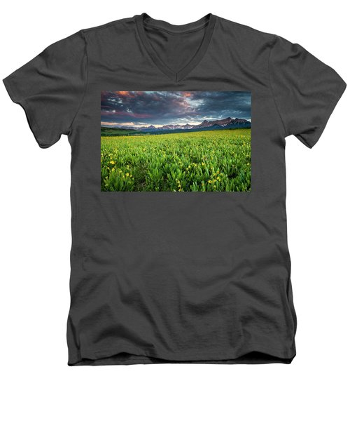 Flower Field And Sneffels Range Men's V-Neck T-Shirt