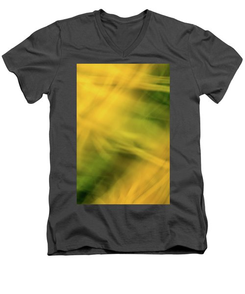 Flower Of Fire 5 Men's V-Neck T-Shirt