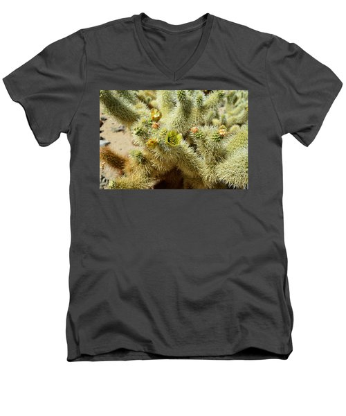 Flowering Cholla Cactus - Joshua Tree National Park Men's V-Neck T-Shirt