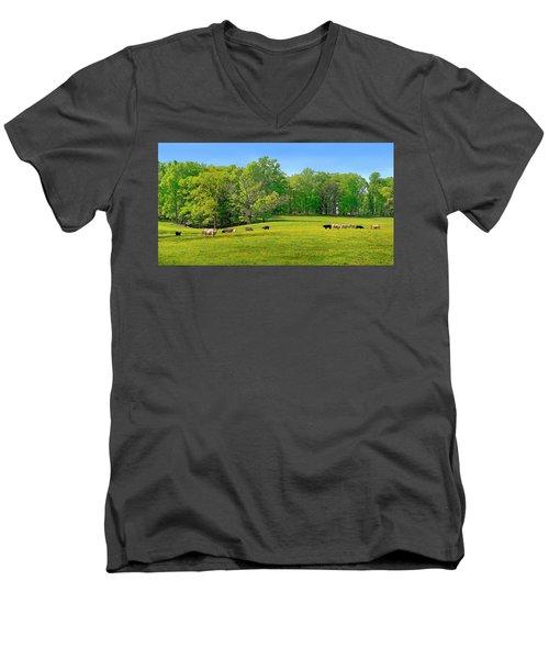 Flowering Cow Pasture Men's V-Neck T-Shirt