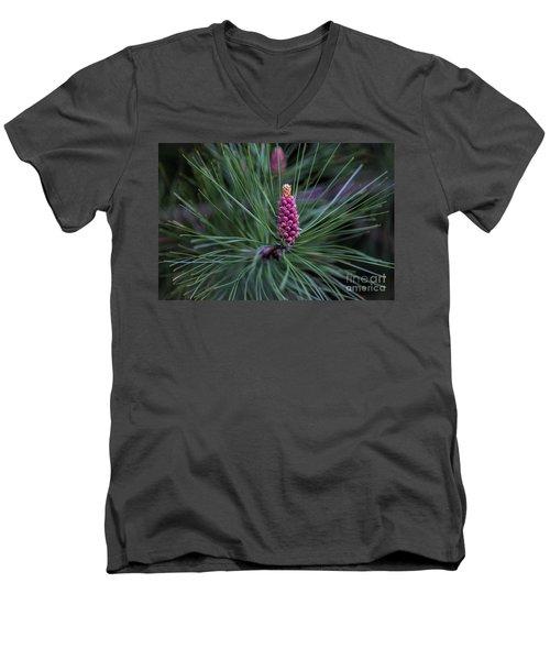 Flowering Pine Cone Men's V-Neck T-Shirt