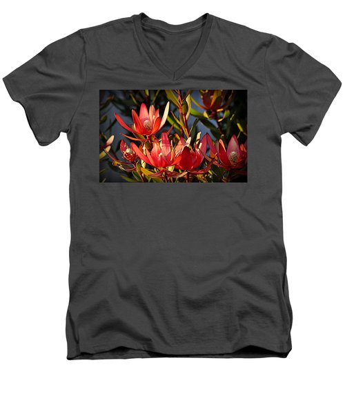 Men's V-Neck T-Shirt featuring the photograph Flowers At Sunset by AJ Schibig