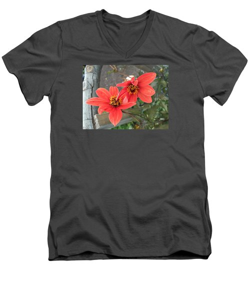 Flowers In Love Men's V-Neck T-Shirt