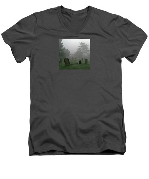 Flowers In The Mist Men's V-Neck T-Shirt
