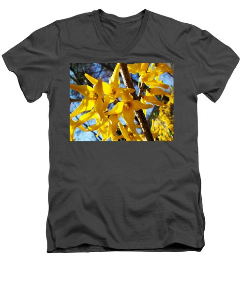 Flowers Of The Sky Men's V-Neck T-Shirt