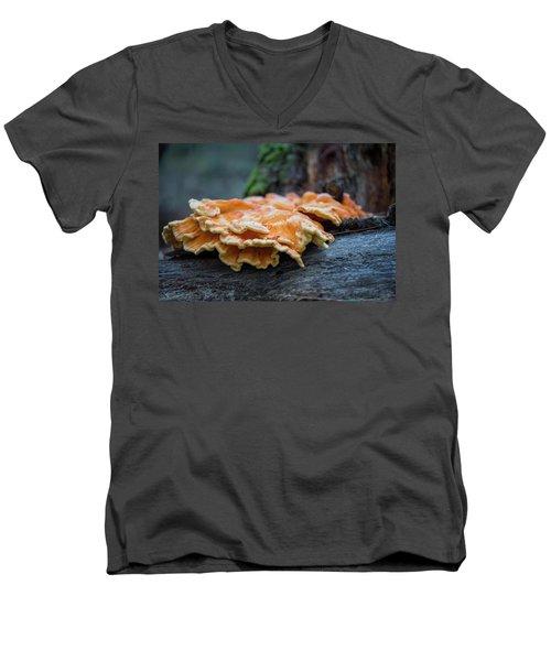 Flowing Fungus Men's V-Neck T-Shirt