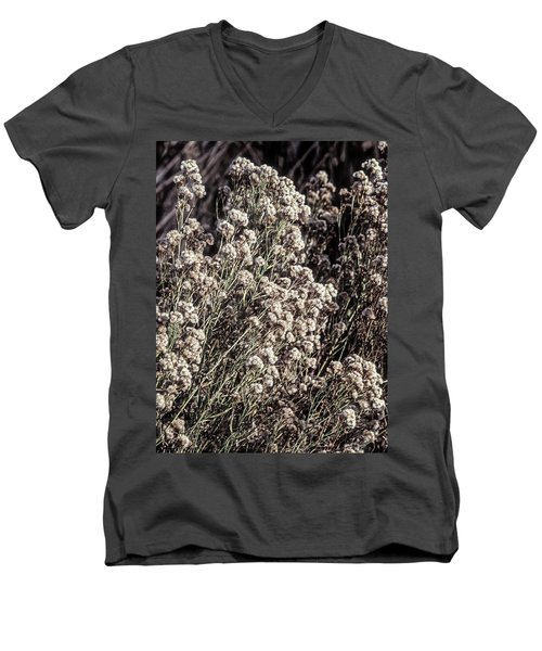 Fluff And Seeds Men's V-Neck T-Shirt