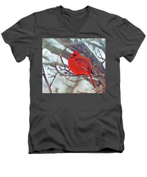 Fluffed Up Male Cardinal Men's V-Neck T-Shirt