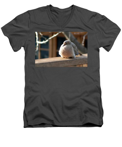 Men's V-Neck T-Shirt featuring the photograph Fluffy by Laurel Best