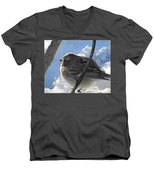 Fluffy Little Bird Men's V-Neck T-Shirt