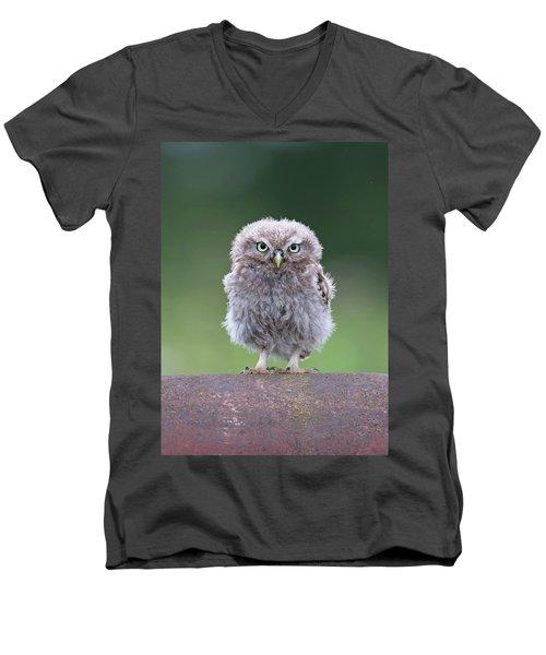 Fluffy Little Owl Owlet Men's V-Neck T-Shirt
