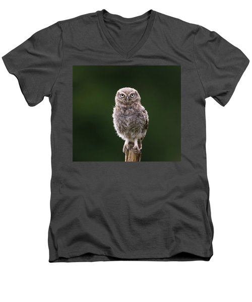 Fluffy Mcfluff-face Men's V-Neck T-Shirt