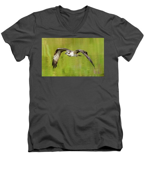 Flying Osprey Men's V-Neck T-Shirt by Jerry Cahill