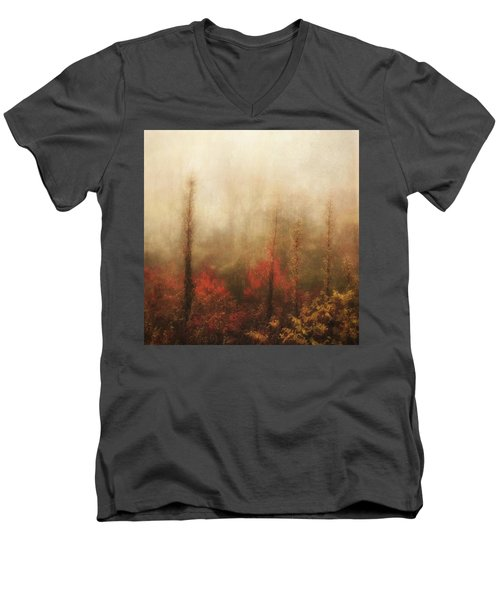 Foggy Fall On The Parkway Men's V-Neck T-Shirt