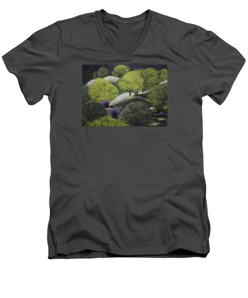 Foothill Spring Men's V-Neck T-Shirt