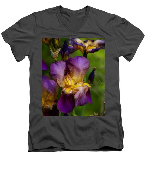 For The Love Of Iris Men's V-Neck T-Shirt