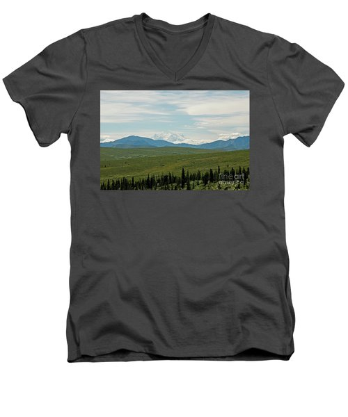 Foreground And Mountain Men's V-Neck T-Shirt