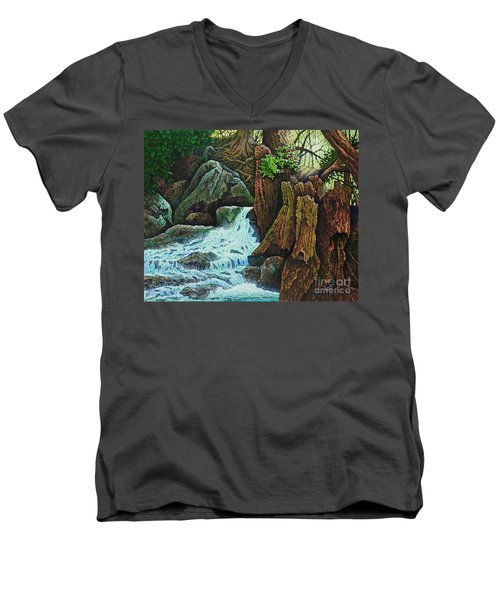 Forest Brook IIi Men's V-Neck T-Shirt by Michael Frank