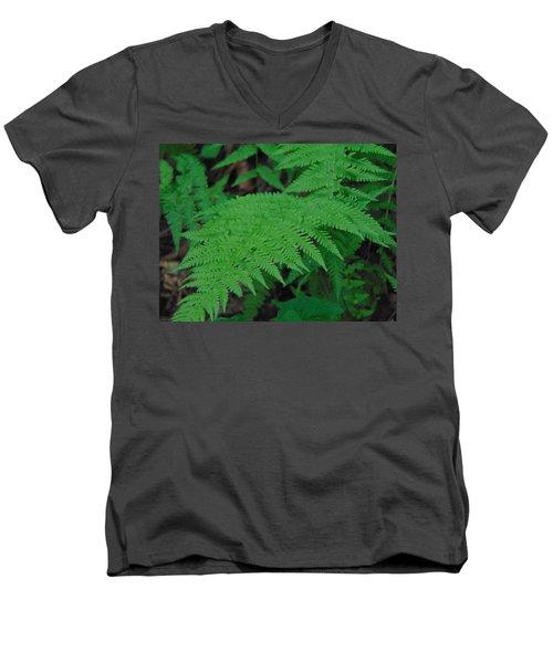 Forest Fern Men's V-Neck T-Shirt
