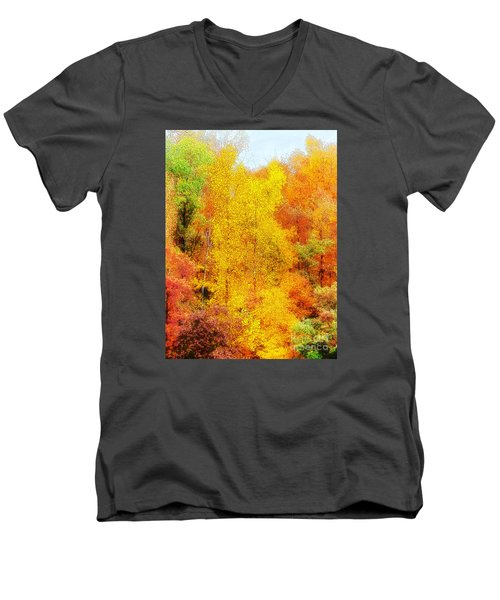 Forest Fire Men's V-Neck T-Shirt by Craig Walters
