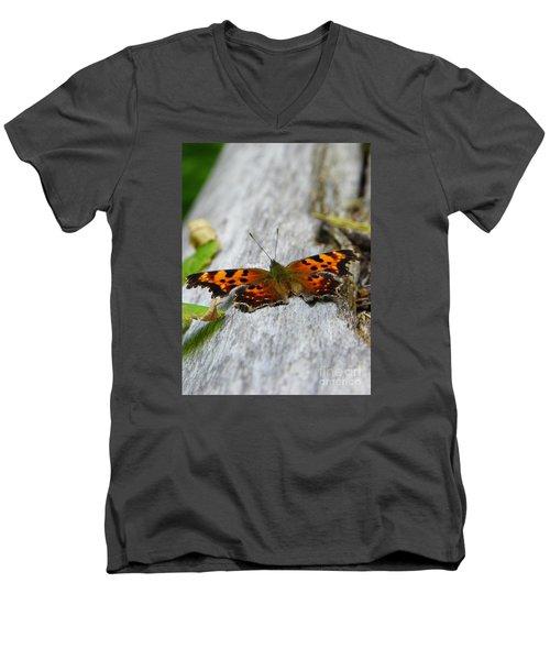 Forest Fritillary Men's V-Neck T-Shirt by KD Johnson