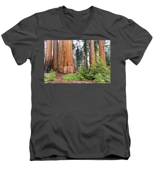 Men's V-Neck T-Shirt featuring the photograph Forest Growth by Peggy Hughes