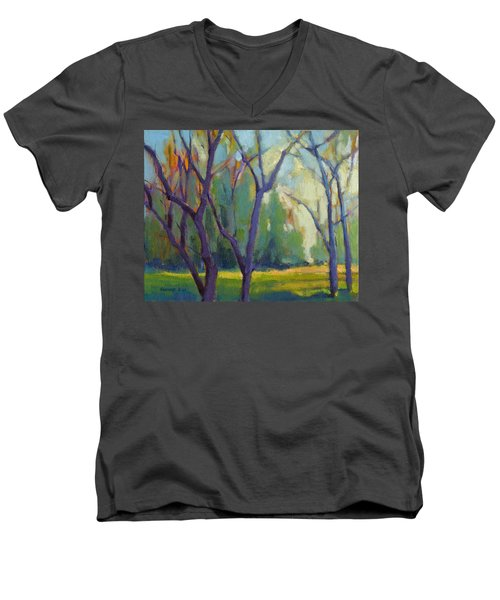 Forest In Spring Men's V-Neck T-Shirt