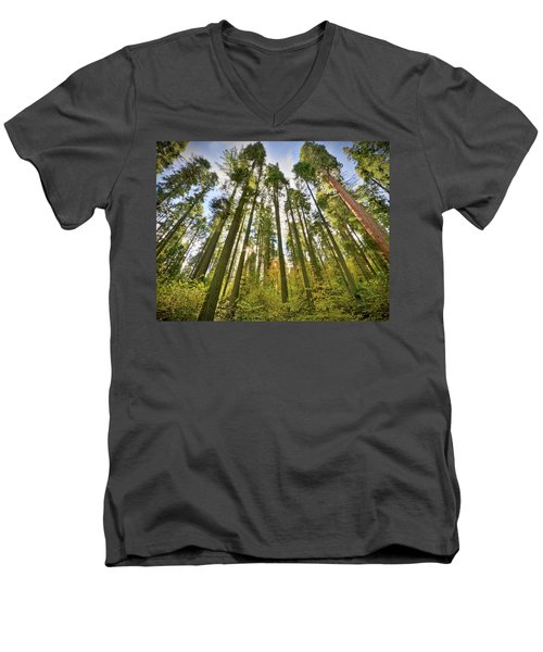 Forest Of Light Men's V-Neck T-Shirt