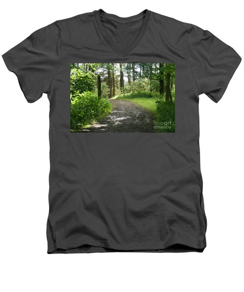 Forest Path. Men's V-Neck T-Shirt