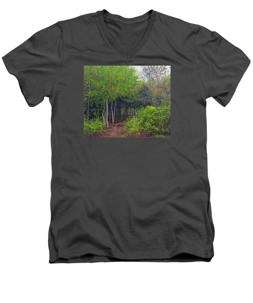 Forest Path Leading Into The Forest Men's V-Neck T-Shirt