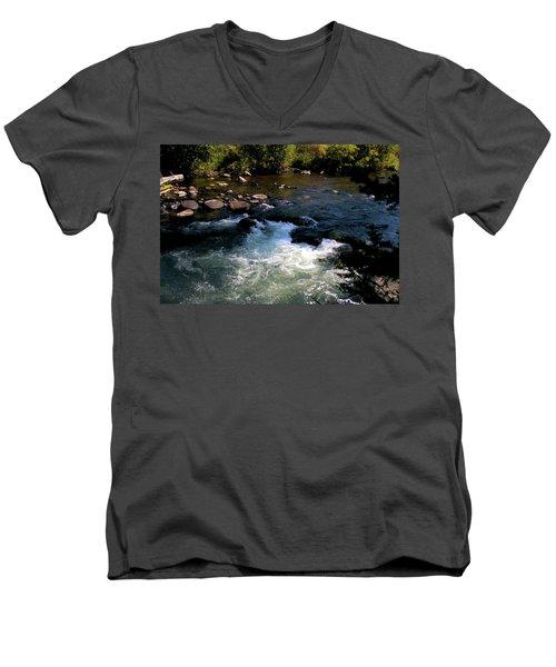Forest Pool Men's V-Neck T-Shirt