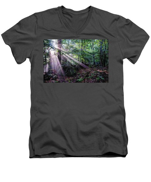 Forest Sunbeams Men's V-Neck T-Shirt