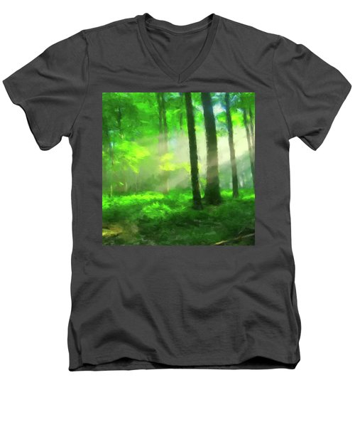 Forest Sunlight Men's V-Neck T-Shirt