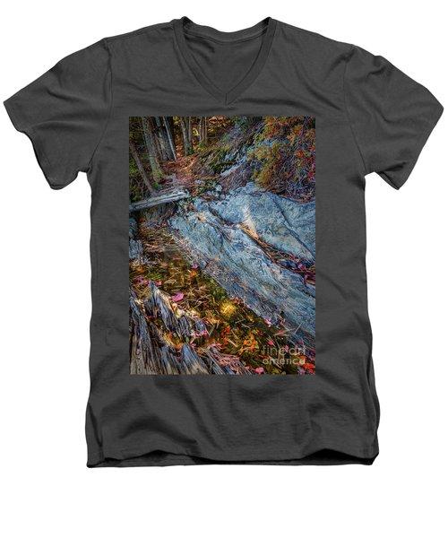 Forest Tidal Pool In Granite, Harpswell, Maine  -100436-100438 Men's V-Neck T-Shirt by John Bald