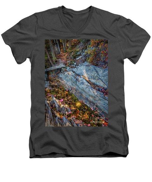Forest Tidal Pool In Granite, Harpswell, Maine  -100436-100438 Men's V-Neck T-Shirt