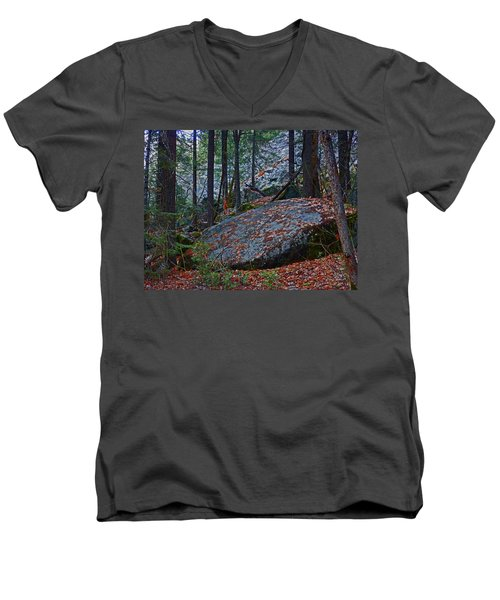 Men's V-Neck T-Shirt featuring the photograph Forest Trail 01 2015 by Walter Fahmy