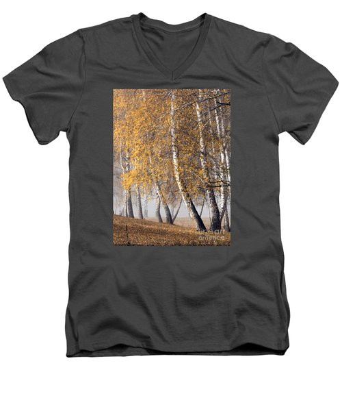 Forest With Birches In The Autumn Men's V-Neck T-Shirt by Odon Czintos
