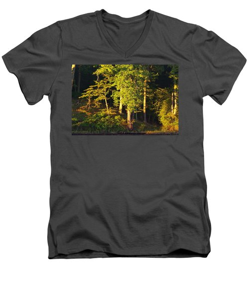 Forests Edge Men's V-Neck T-Shirt